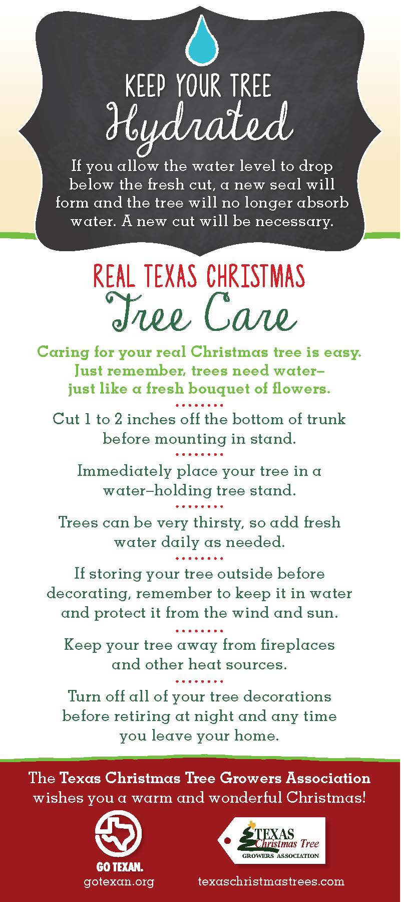 How To Take Care Of A Real Christmas Tree.Christmas Tree Farms