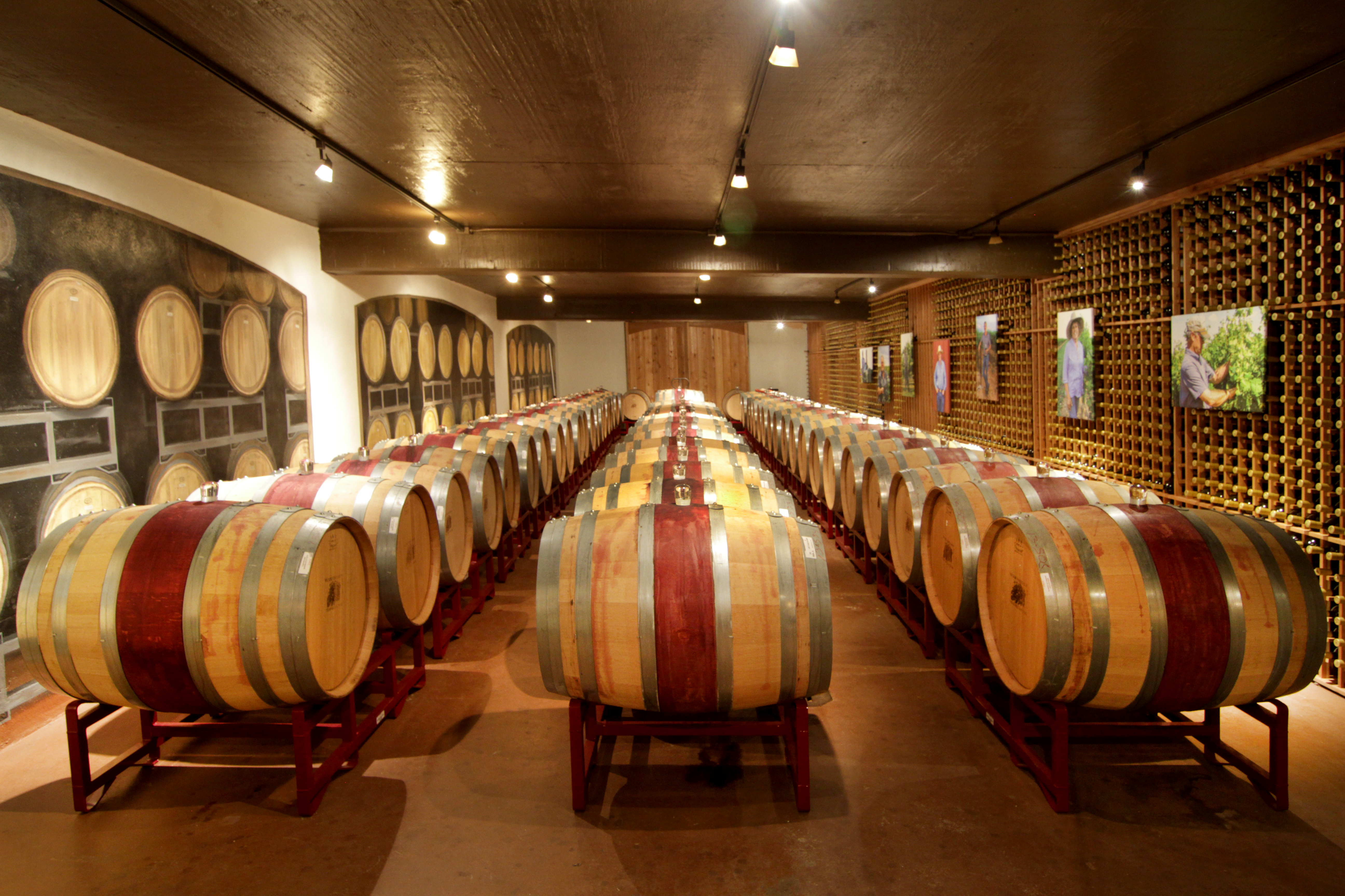 The Archive Contains Photos Of Texas Vineyards Wineries